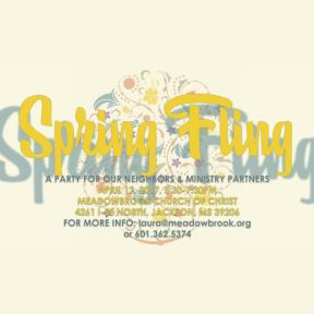 Meadowbrook Church of Christ Spring Fling
