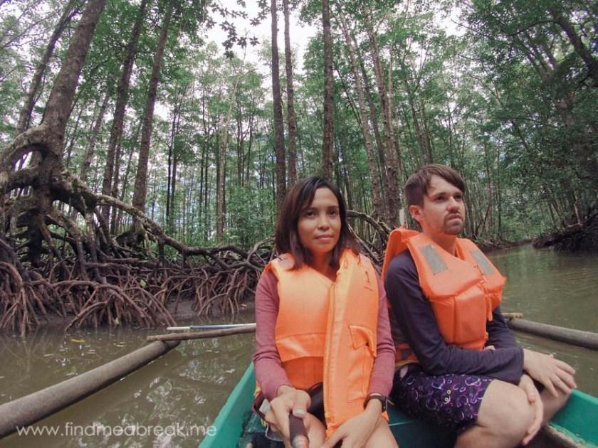 Mangroves-Tour