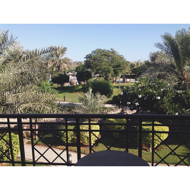 view from balcony fujairah rotana