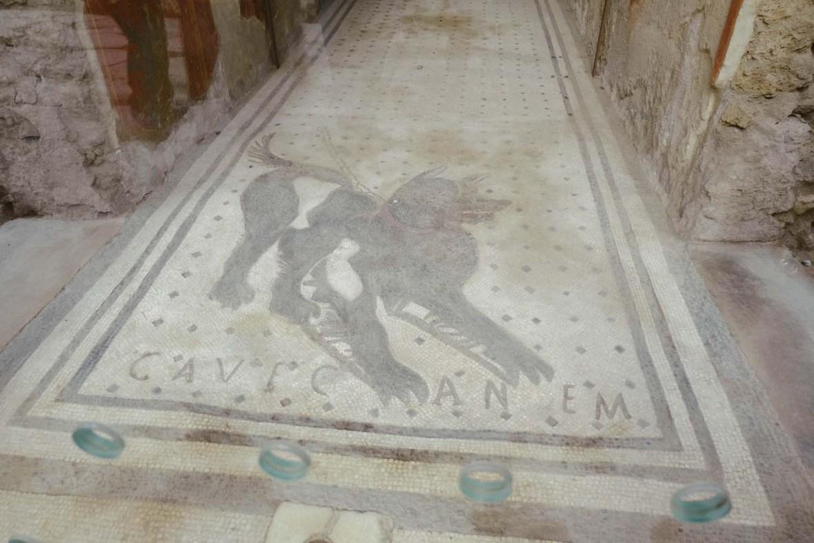 Pompeii Beware of the dog