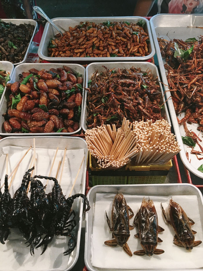 Khao San Road bugs exotic food