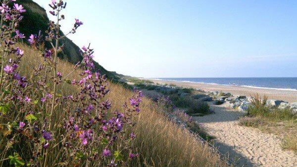 California Cliffs Beach