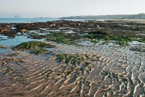North Berwick Beach - Berwick Holiday Park