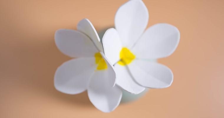 DIY Plumeria Flower