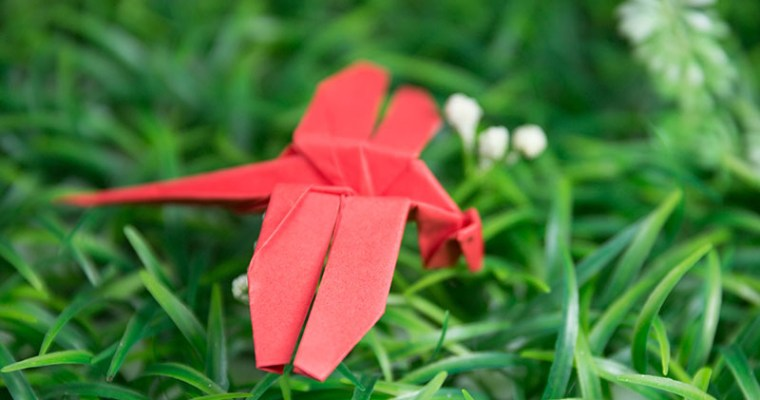 Origami Insects : Instructions | 400x760