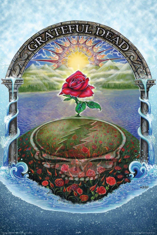 Discounted Nmr 24849 Grateful Dead Rose Decorative Poster