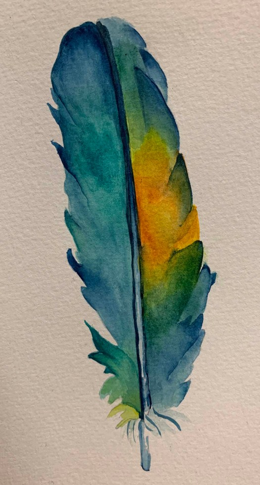 Feather, liminalis (watercolor)