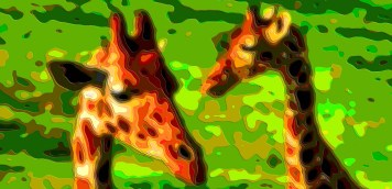 Animal Portrait Art Giraffes