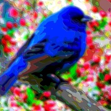 Blue Bird Animal Art
