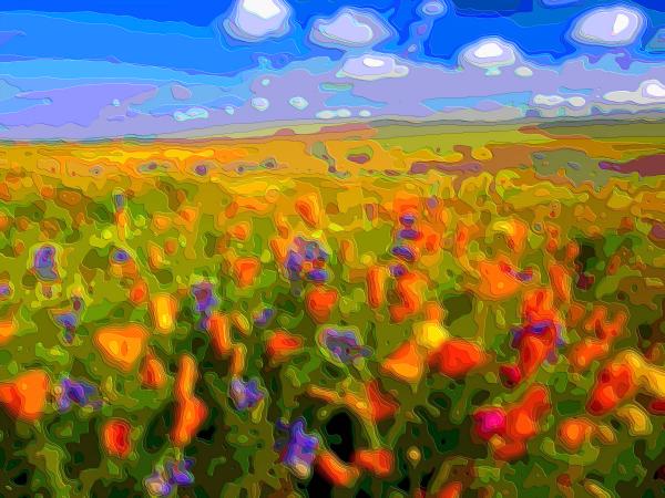 Flower Art Sale Wild Flowers