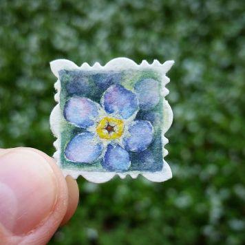 Alaska Forget Me Not State Flower
