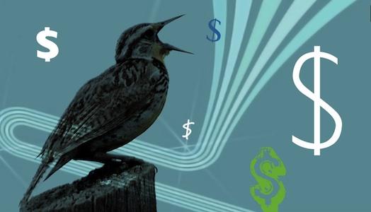 tweet money twitter