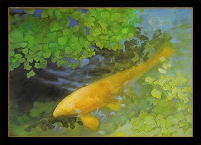 yellow carp fish