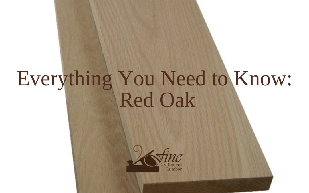 Everything You Need to Know: Red Oak