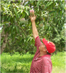 PHotos of farmer in red cap in mexico