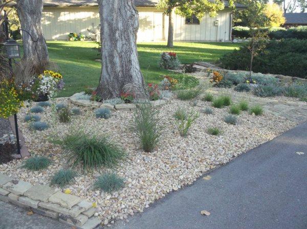 david's front-yard rock garden