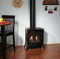 Empire Compact Direct Vent Stove | Fine's Gas