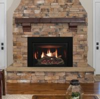 Rushmore 35 Direct Vent Fireplace Insert | Fine's Gas