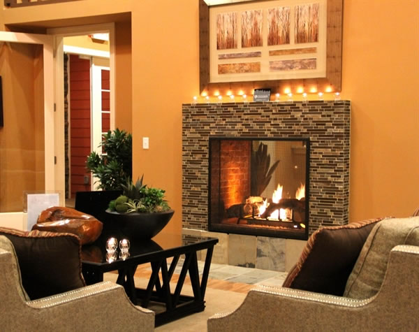 HeatNGlo EscapeST See Through Gas Fireplace