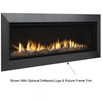 Majestic Wide View Echelon II Direct Vent Fireplace 48 ...
