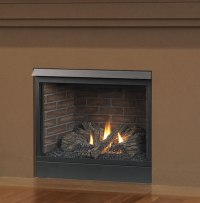 Patriot 42 Inch Direct Vent Fireplace by Majestic | Fine's Gas