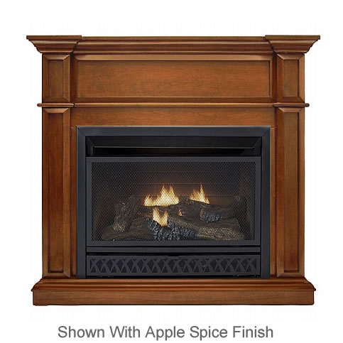 ProCom Complete Ventless Gas Fireplace System  Fines Gas