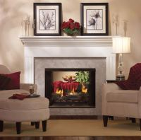 Tahoe See-Through Direct Vent Fireplace | Fine's Gas