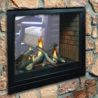 Tahoe Premium See-Through Clean Face Direct Vent Fireplace ...
