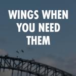 「翼を授ける」は英語でなんというのか問題