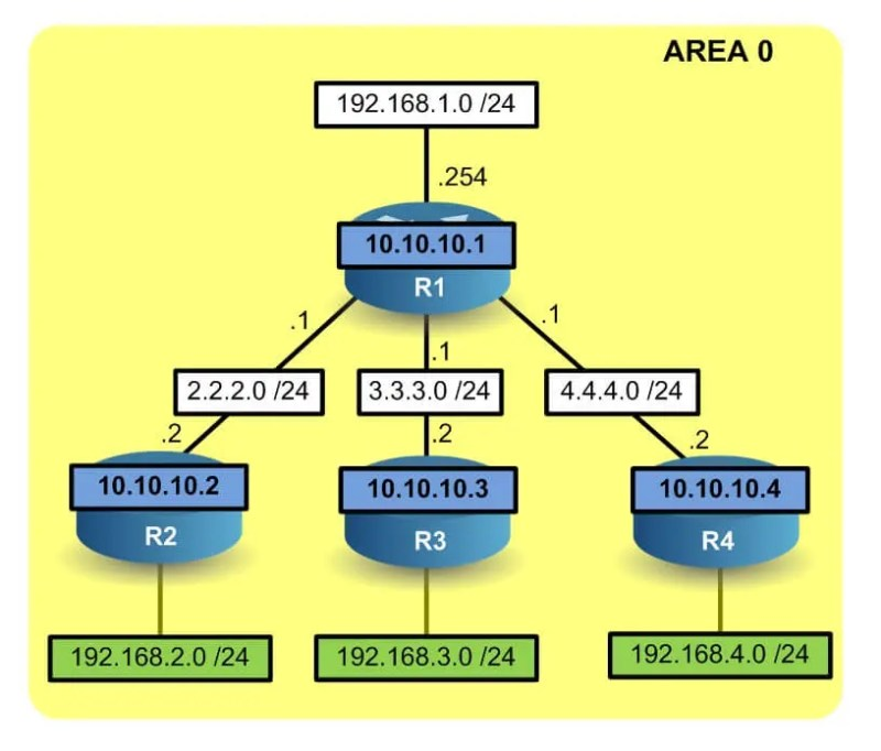 Discovery of new network via OSPF