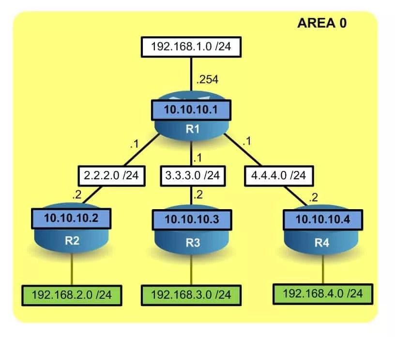 Découverte de nouveau réseau via OSPF