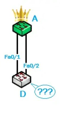 Protocole STP 2