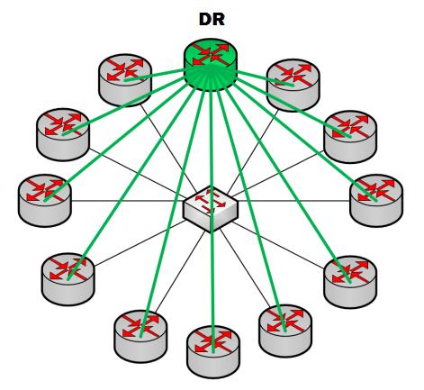 DR (Designated Router)