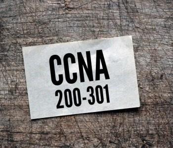 CCNA 200-301 8