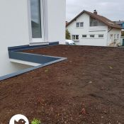 Fink Garage Ladenburg Dach mit erster Begrünung