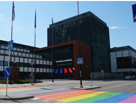 Is There a Place for Rainbow Crosswalks on Our Streets?