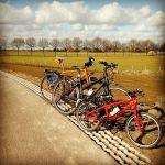 Alle fietsen op één rij