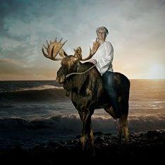 Hva er vel bedre enn å ri på en elg i solnedgang på Mølen :)
