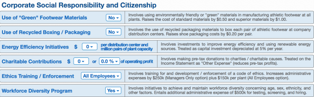 Corporate Social Responsibility and Citizenship (BSG)