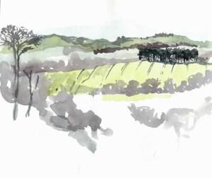 Shropshire, 2011
