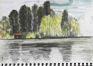 Himley, Dudley, A4, May 2015; charcoal & watercolour