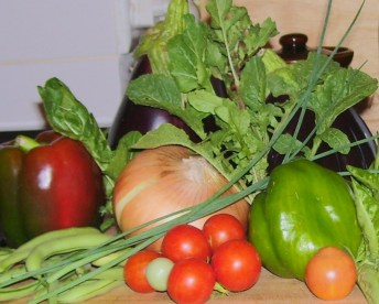 Garden bounty - onions, peppers, brinjal, onion, beans, tomatoes