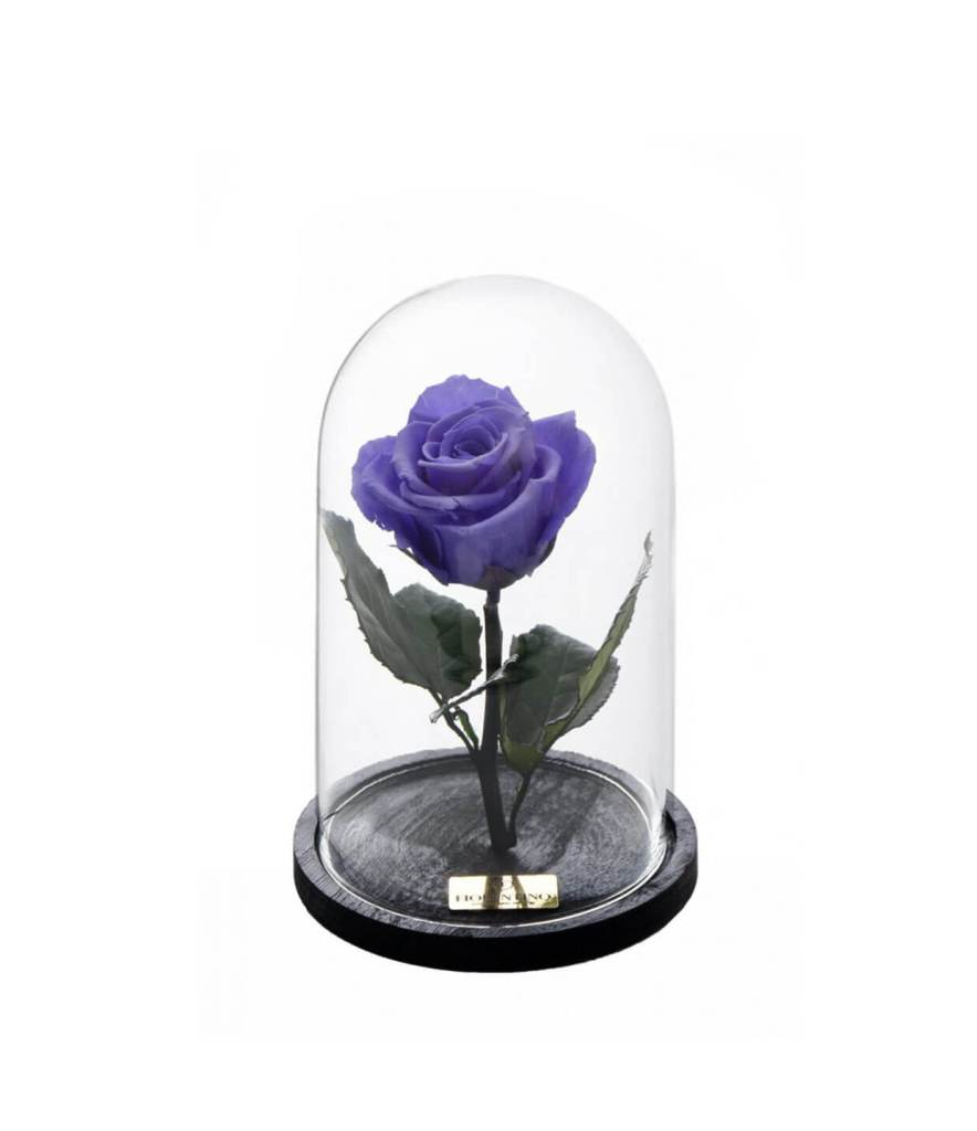 PER SEMPRE LAVENDER SMALL (BEAUTY & THE BEAST)