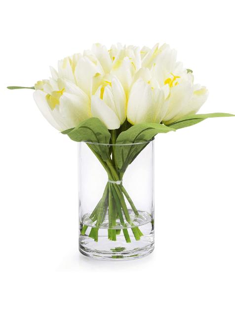 tuliop08