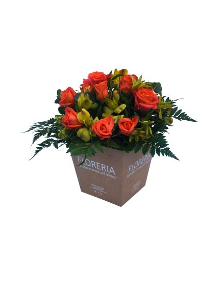 Box roseline + alstroemeria