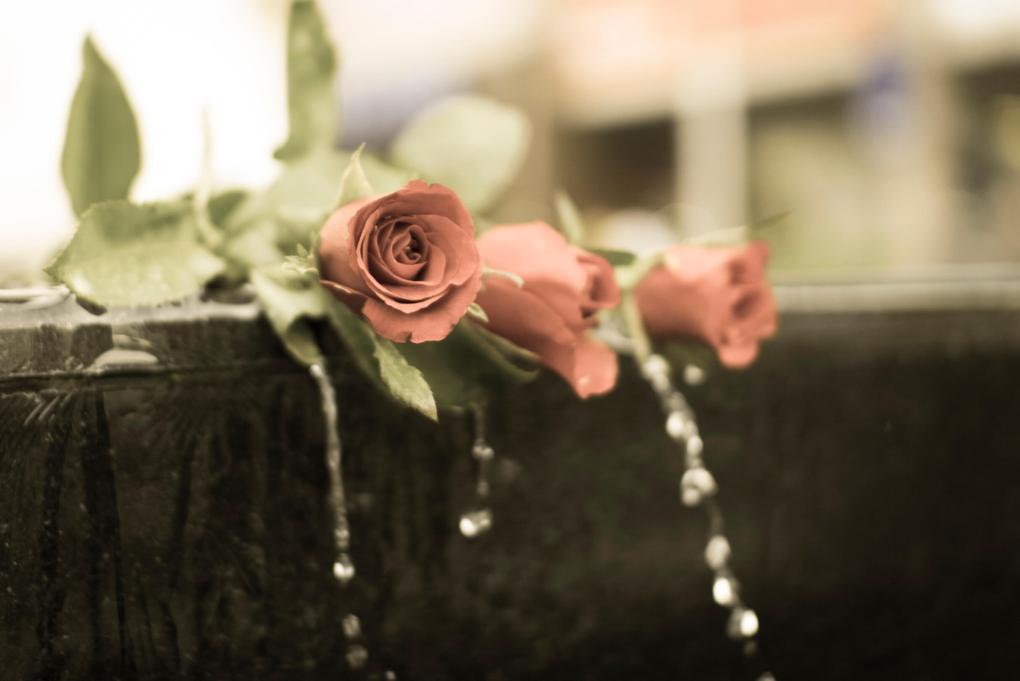 le rose rosa sono le più indicate per un funerale di una donna in età avanzata