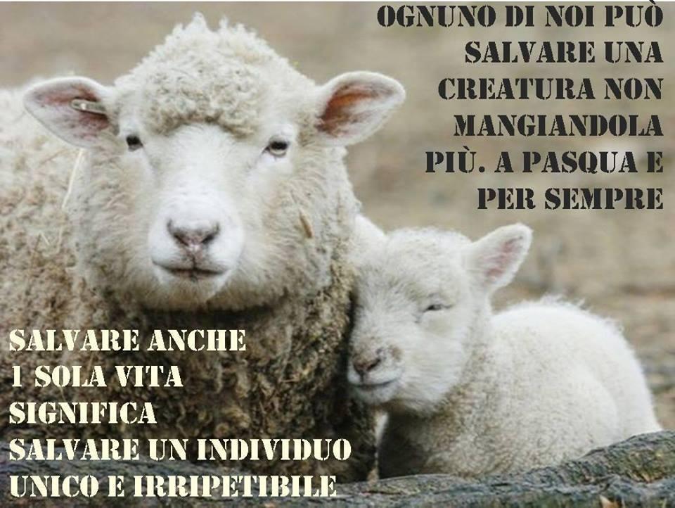 Risultati immagini per no agnelli per pasqua