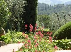 Scorcio di giardino tipico toscano Ugolino-FIScorcio di giardino tipico toscano Ugolino-FI