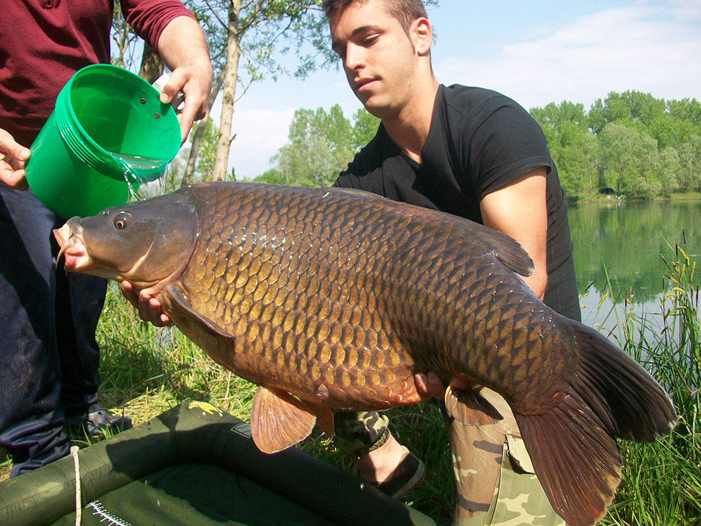 carpfishing-boschetto
