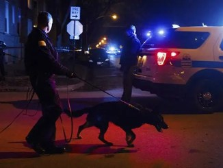 a man was shot dead by an accomplice as they tried to break into the home in the 2400 block of West Eastwood Avenue on the North Side shortly before 10 p.m. Tuesday, according to Chicago police. The intruders encountered residents at the front door, prompting one of them to fire shots at the porch, police said. The gunman's accomplice, 43-year-old Luis Antonio Morales, was struck in the head and pronounced dead on the scene. He lived in the 10500 block of West Grand Avenue in Melrose Park, according to the Cook County medical examiner's office.